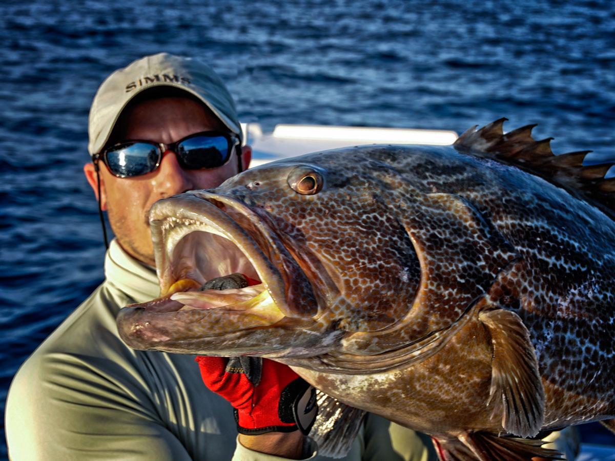 платная рыбалка кубовая